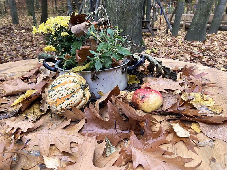 Der Herbst, der Herbst, der Herbst ist da!